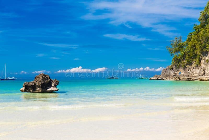 Scena di sogno Belle palme sopra la spiaggia di sabbia bianca, il mare tropicale Vista di estate della natura fotografia stock libera da diritti