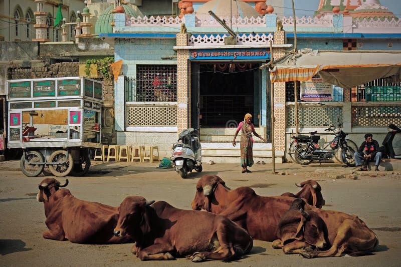 Scena gujarati del tempio fotografie stock
