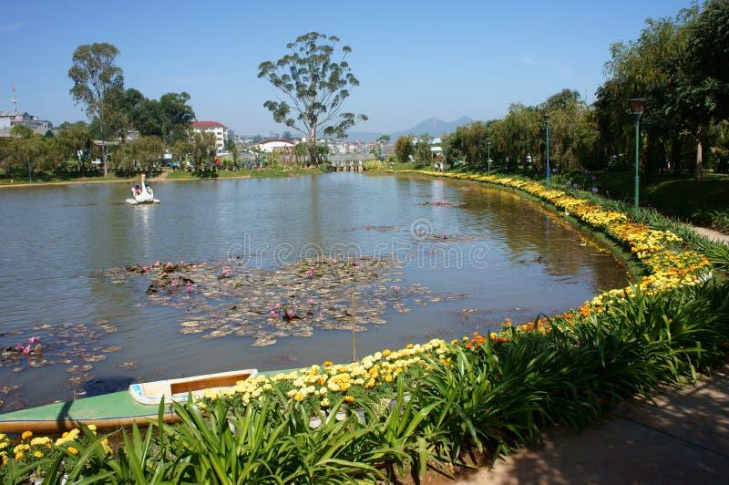 Scena jezioro z żółtym kwiatem i rząd wierzbowy drzewo fotografia royalty free