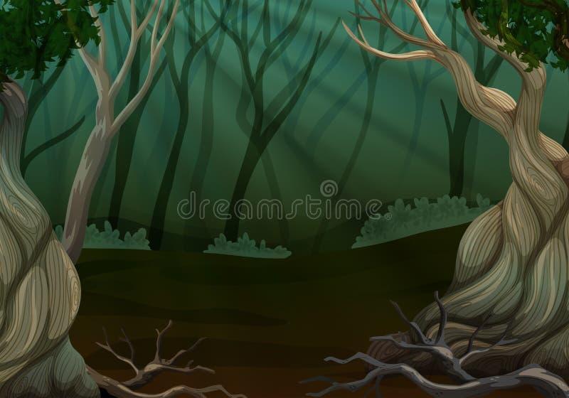 Scena profonda della foresta con molti alberi illustrazione vettoriale
