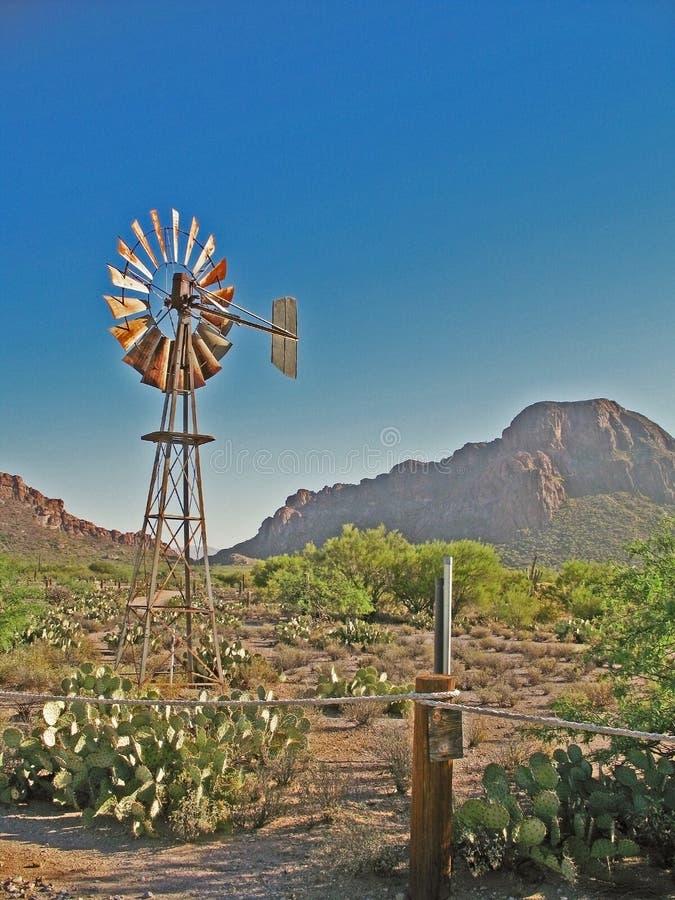 scena pustyni western zdjęcie royalty free