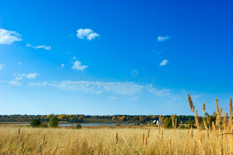 Scena rurale fotografia stock