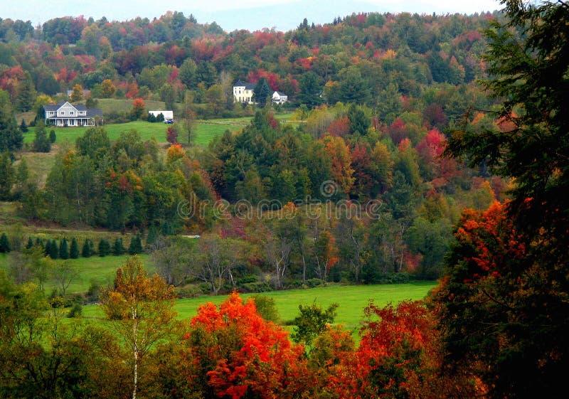 Download Scena rurale nella caduta immagine stock. Immagine di paesaggio - 212297