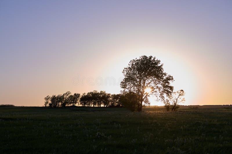 Scena rurale tranquilla al tramonto in Flint Hills, U.S.A. immagine stock