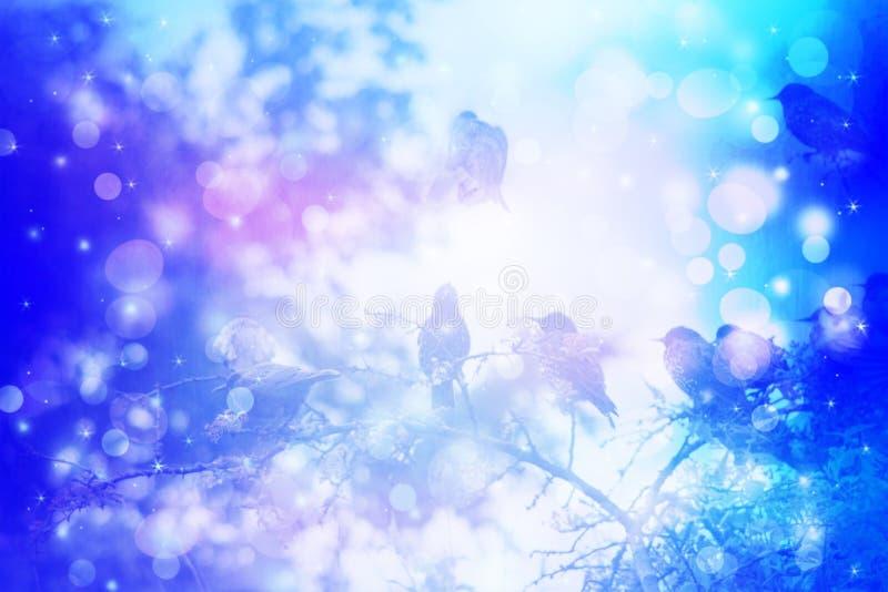 Scena vaga di inverno con il sittin degli uccelli dello storno sui rami di albero nel giardino illustrazione vettoriale