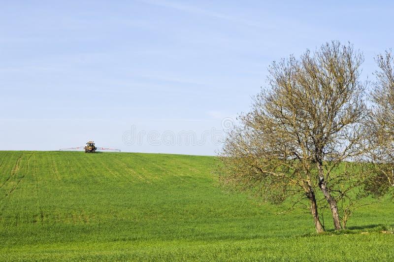 scena wiejskiej zdjęcie stock