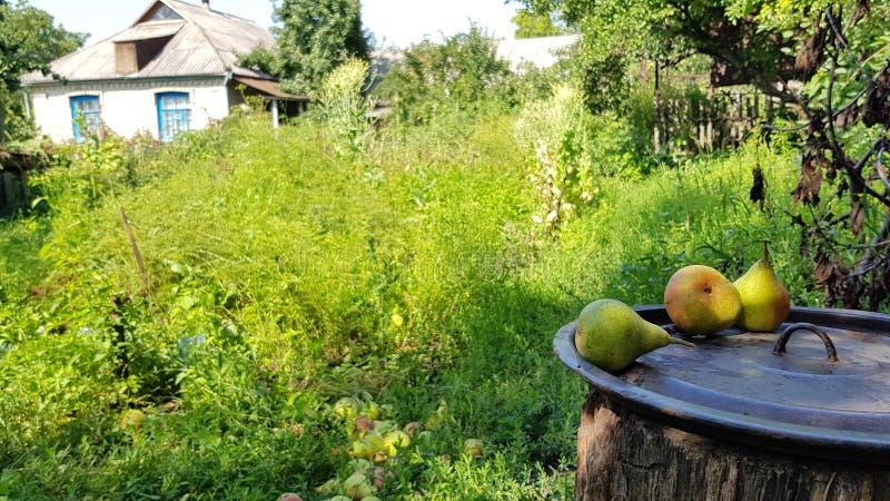 Scena wioska w Ukraina fotografia royalty free