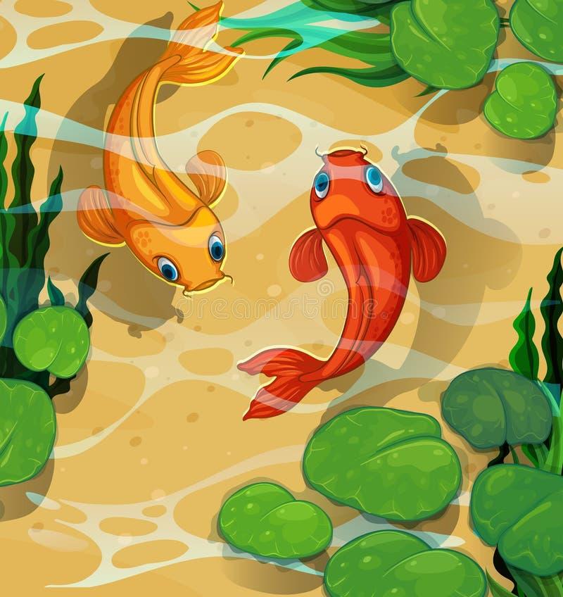 Scena z kois pływa w basenie ilustracja wektor