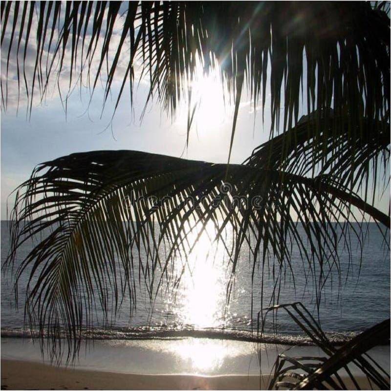 Scenary latéral de plage beau photo stock