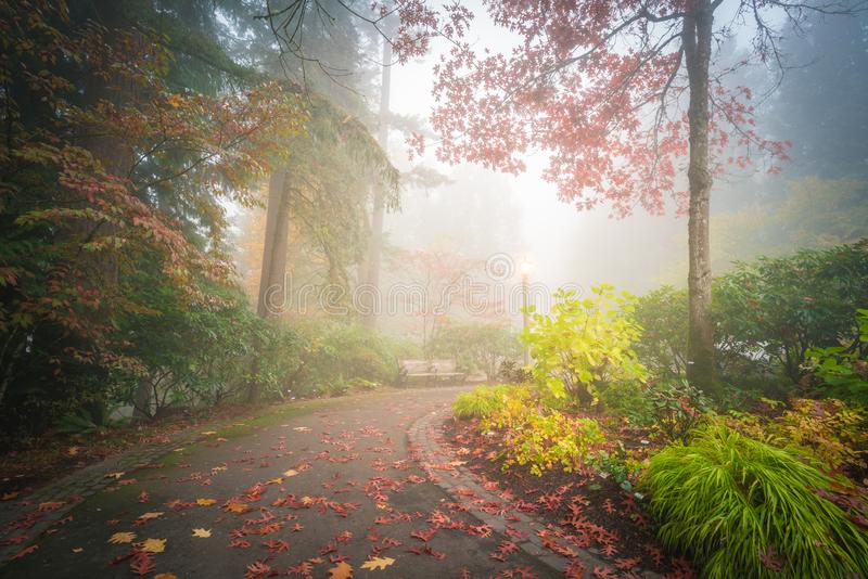 Foggy colorful autumn and curved trail. This is a scene of foggy colorful autumn and curved trail royalty free stock image