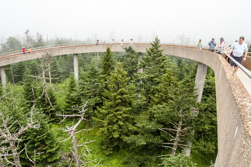 Scene from Great Smokey Mountains at Clingman`s Dome royalty free stock photos