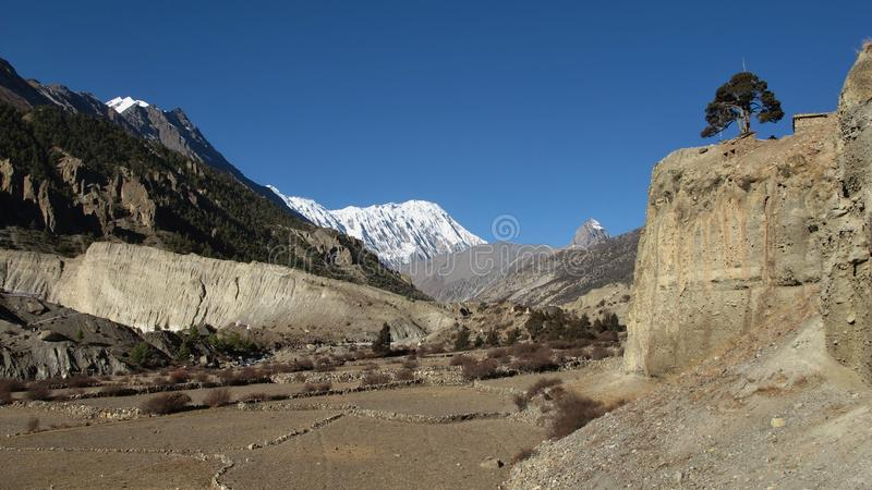 Scene in Manang, fields in high altidude surroundet by mountains royalty free stock photography