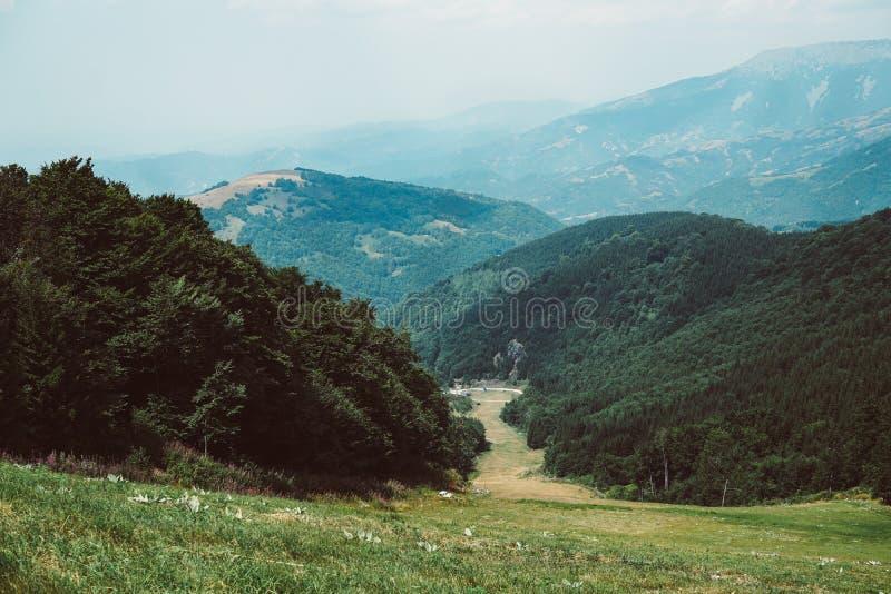 Old Mountain Serbia - Stara Planina Srbija. Scene from the Old Mountain, Ski Center in summer period, Stara Planina Srbija, mountain, grass, tree forest stock images