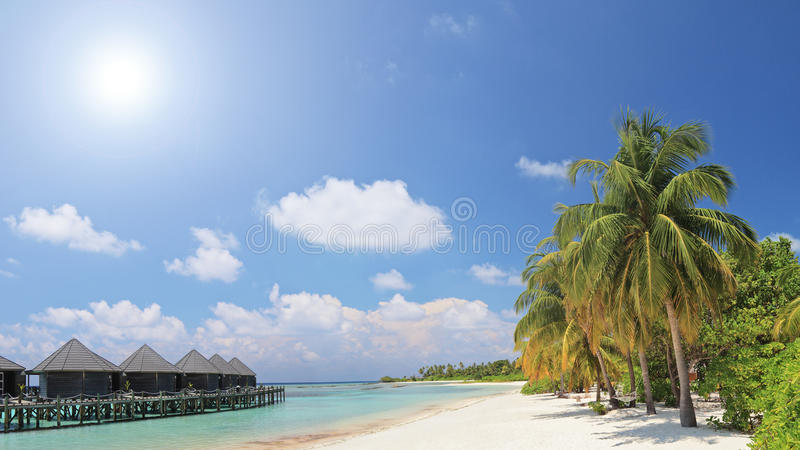 Scene Of Palm Trees And Water Villa Cottages Stock Photography