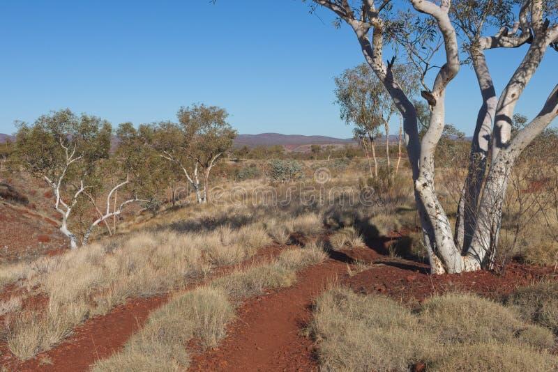 Scene Pilbara landschap in West-Australië royalty-vrije stock foto's