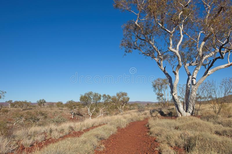 Scene Pilbara landschap in West-Australië stock foto