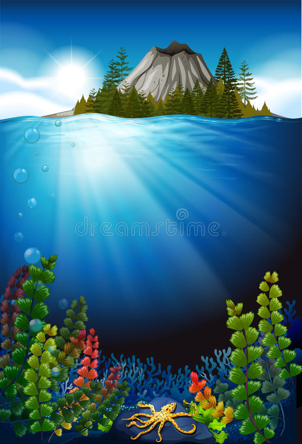 Scene with plants under the sea vector illustration