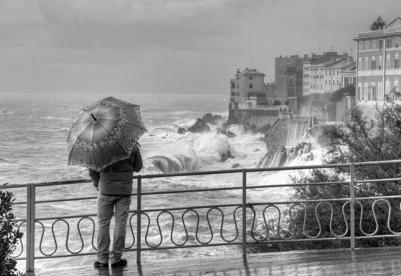 Scene in the rain royalty free stock images
