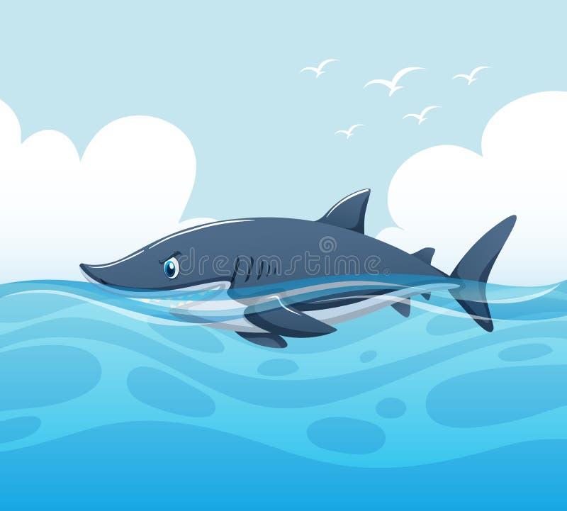 Scene with shark in ocean vector illustration