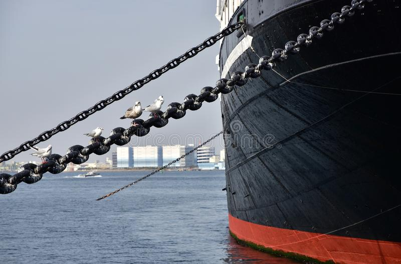 Scene of the ship anchoring in the port. Scene of a ship anchoring in the port and the seabird stopping on a chain stock photos