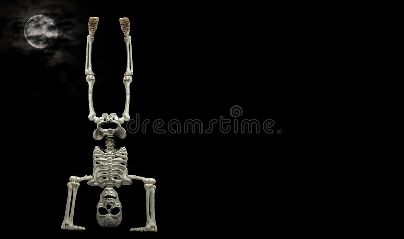 Skeleton Hand Stand royalty free stock photos