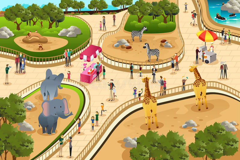 Scene in a zoo. A vector illustration of scene in a zoo
