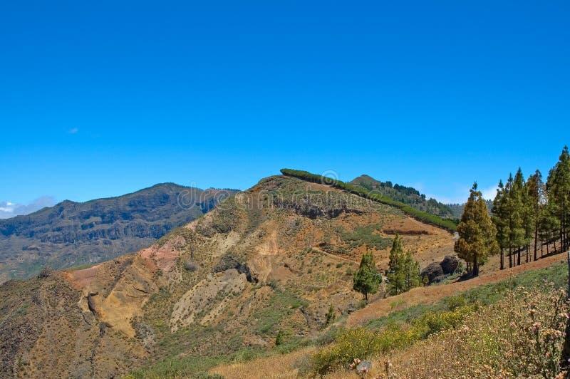 sceneria mountain zdjęcia royalty free