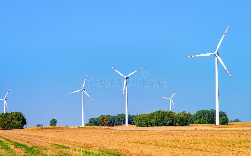 Sceneria z Wiatrowymi młynami w Południowym Moravia zdjęcie royalty free