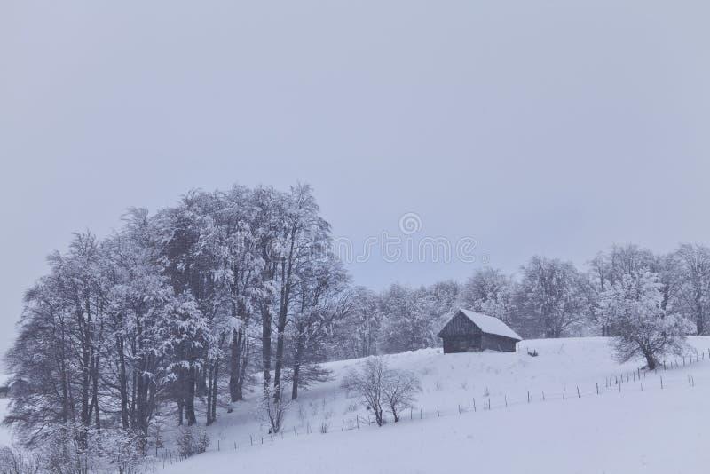scenerii wiejska zima obrazy royalty free