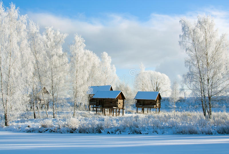 scenerii zima zdjęcia royalty free