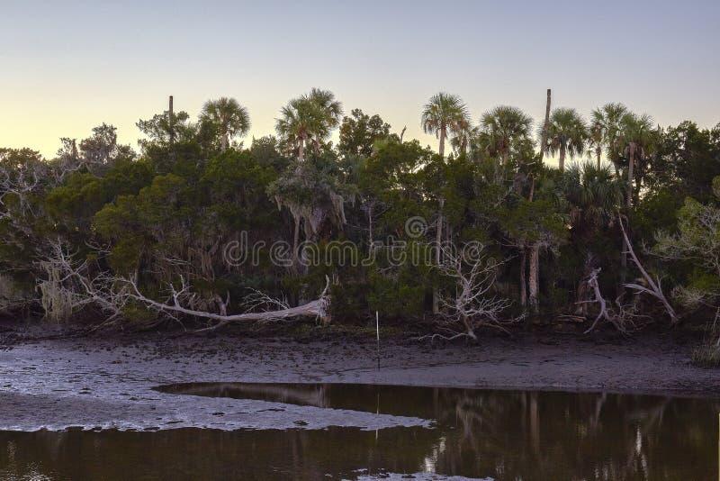 Scenery Along Florida`s Nature Coast. Coastal scenery at Withlacoochee Gulf Preserve near Crystal River, Florida royalty free stock photos