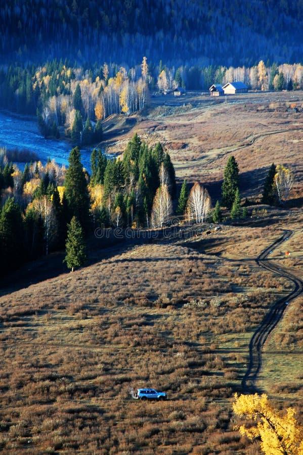 Scenery in autumn stock photo