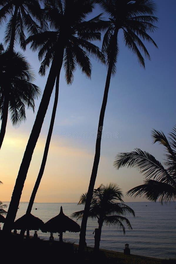 Scenery on beach royalty free stock photography