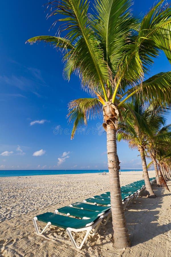 Scenery of Caribbean beach royalty free stock image