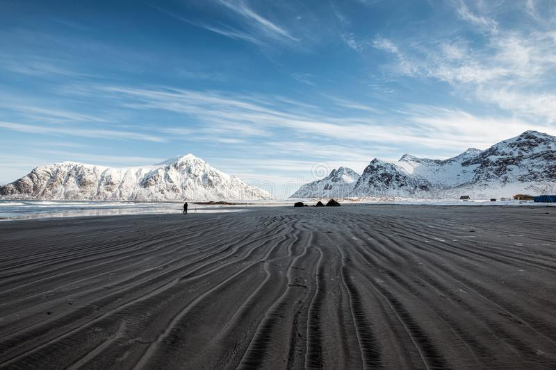 Scenery of furrow beach with snowy mountain on coastline at Skagsanden beach. Lofoten islands, Norway royalty free stock photo