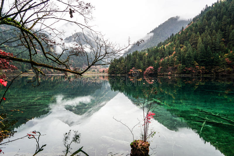 Scenery Of Lake in Forest with Colorful Leafs and Mountain in Autumn royalty free stock images