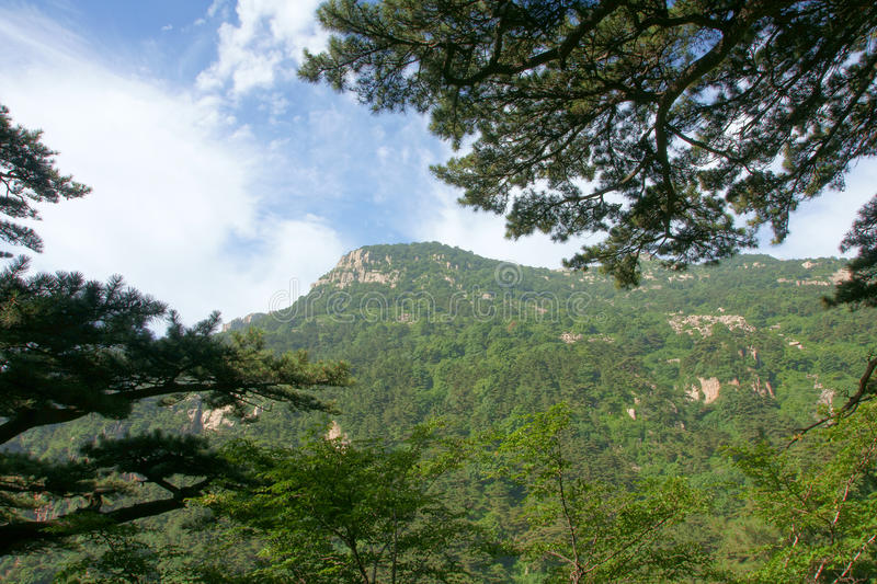 Download Scenery of Mount Taishan stock photo. Image of scenic - 13428194