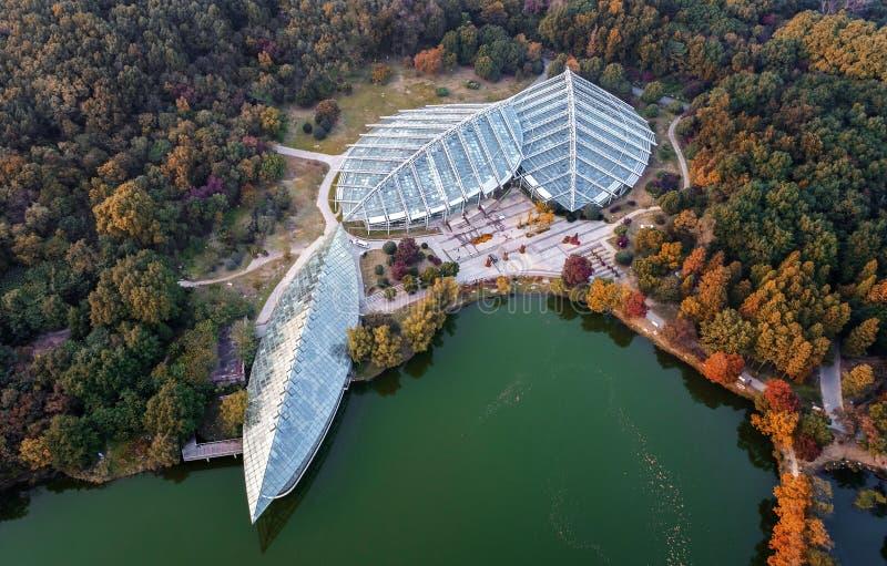 Aerial Nanjing Zhongshan Botanical Garden. This is the scenery of Nanjing Zhongshan Botanical Garden taken by drone
