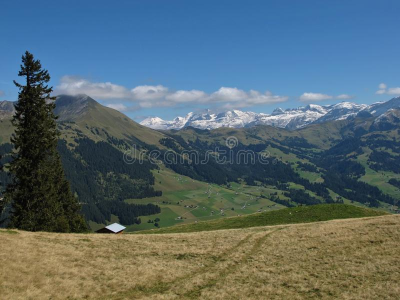 Download Scenery Near Gstaad stock image. Image of saanenland - 26878037