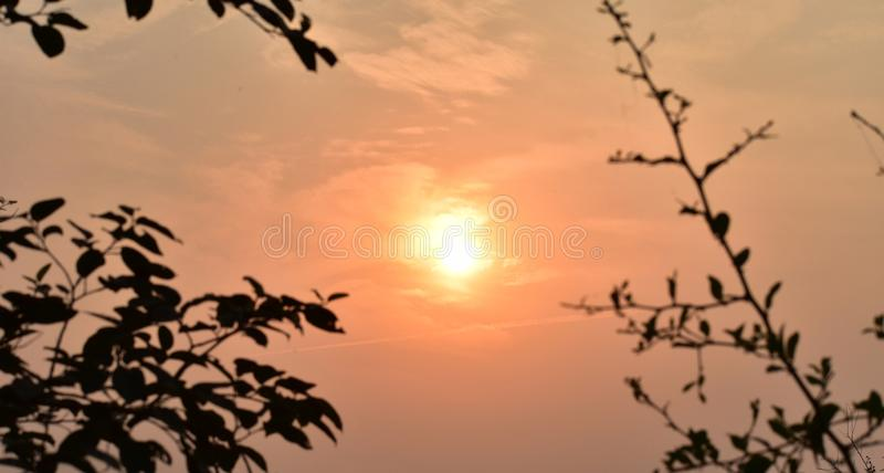 This is an scenery or scenic view of beautiful sunset point scenario in keoladeo national park in rajasthan india stock photography