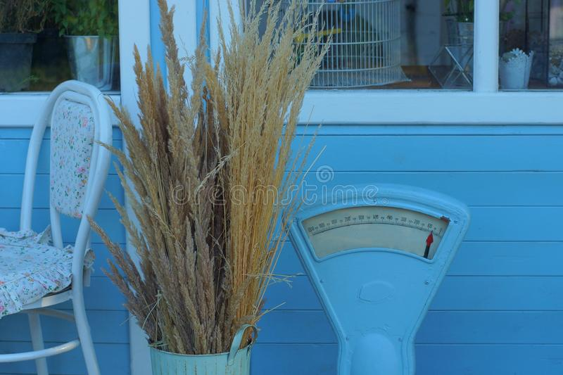 Scenery from soviet old scales next to a dry bouquet of grass in a vase near the blue wall royalty free stock photography