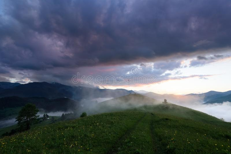 Scenery of the sunrise at the high mountains. Dense fog with beautiful light. The lawn with yellow flowers. Mist. Location place Ukraine, Europe stock image