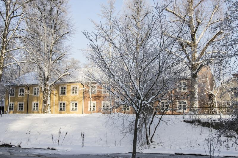 Swedish Rural Building With Trees & Snow royalty free stock photo