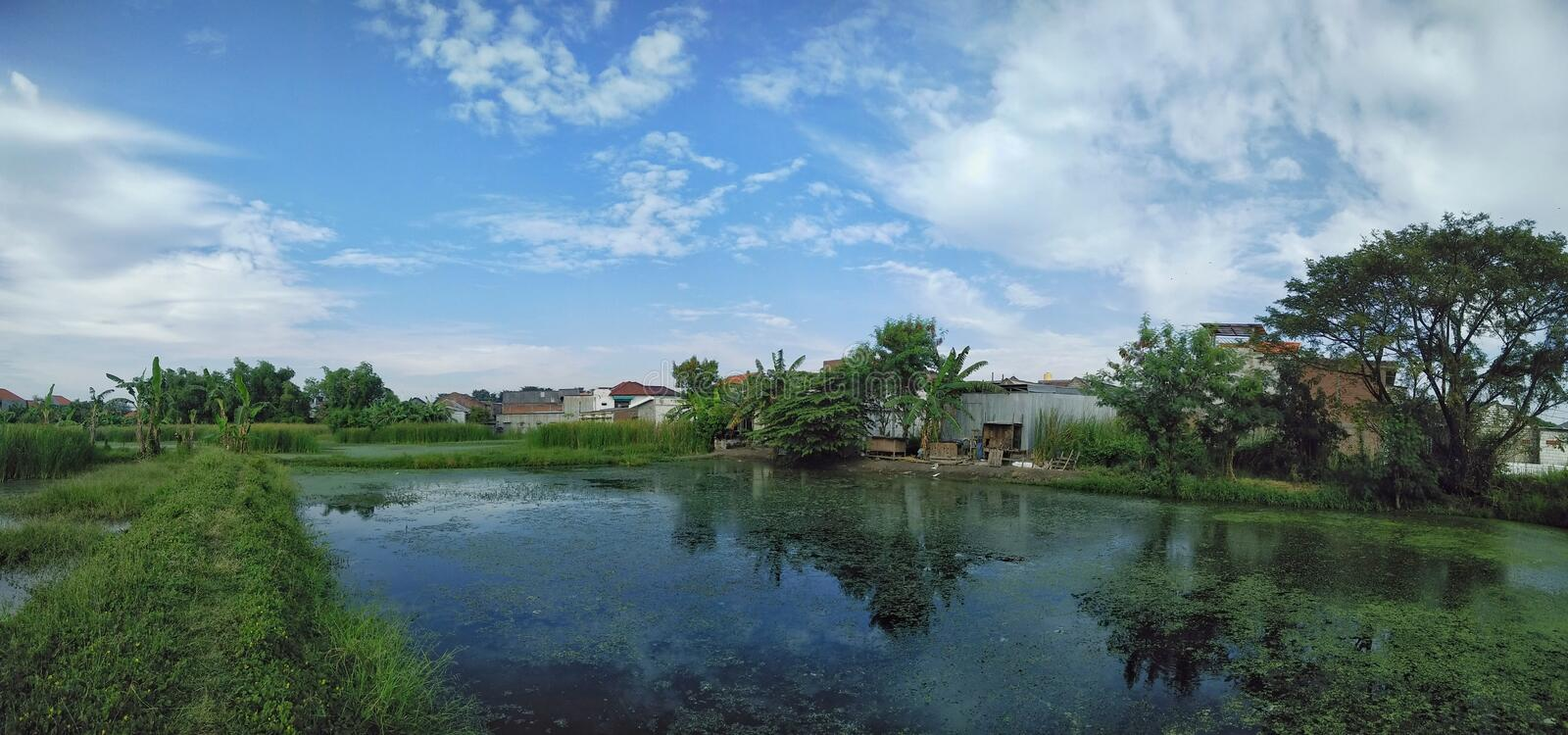 Scenic view of fish pond and clear blue sky background stock images
