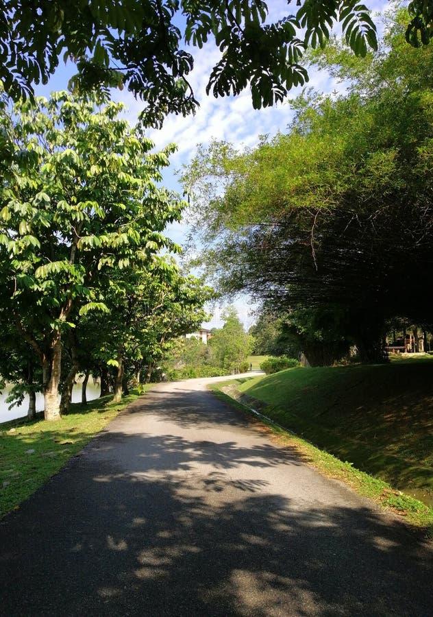 Scenery view of walking path at Taman Wetland Putrajaya, Malaysia royalty free stock photography