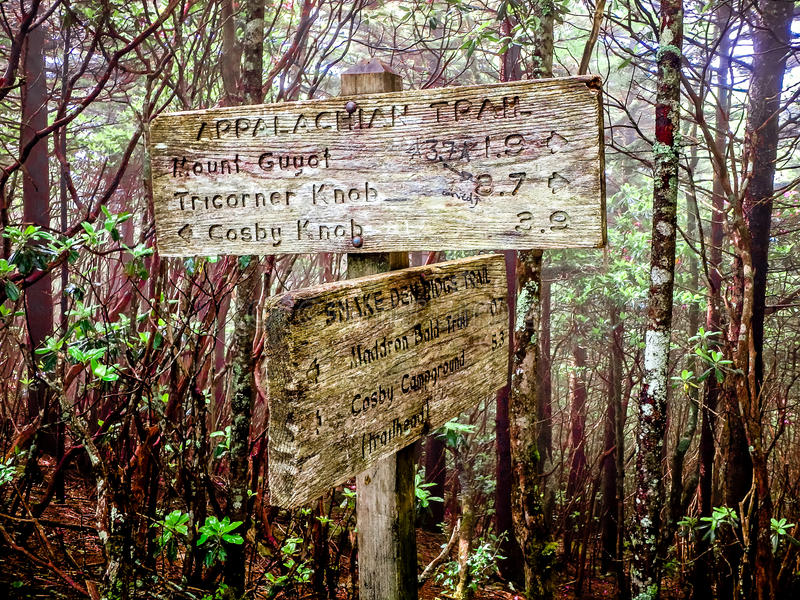 Scenes along appalachian trail in great smoky mountains stock image