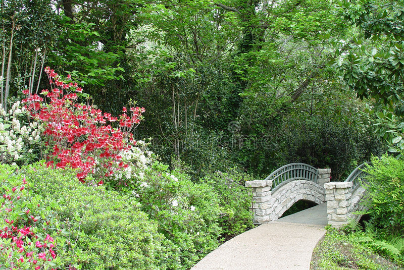 Download Scenic stock photo. Image of scenic, flower, beautiful, streem - 78350