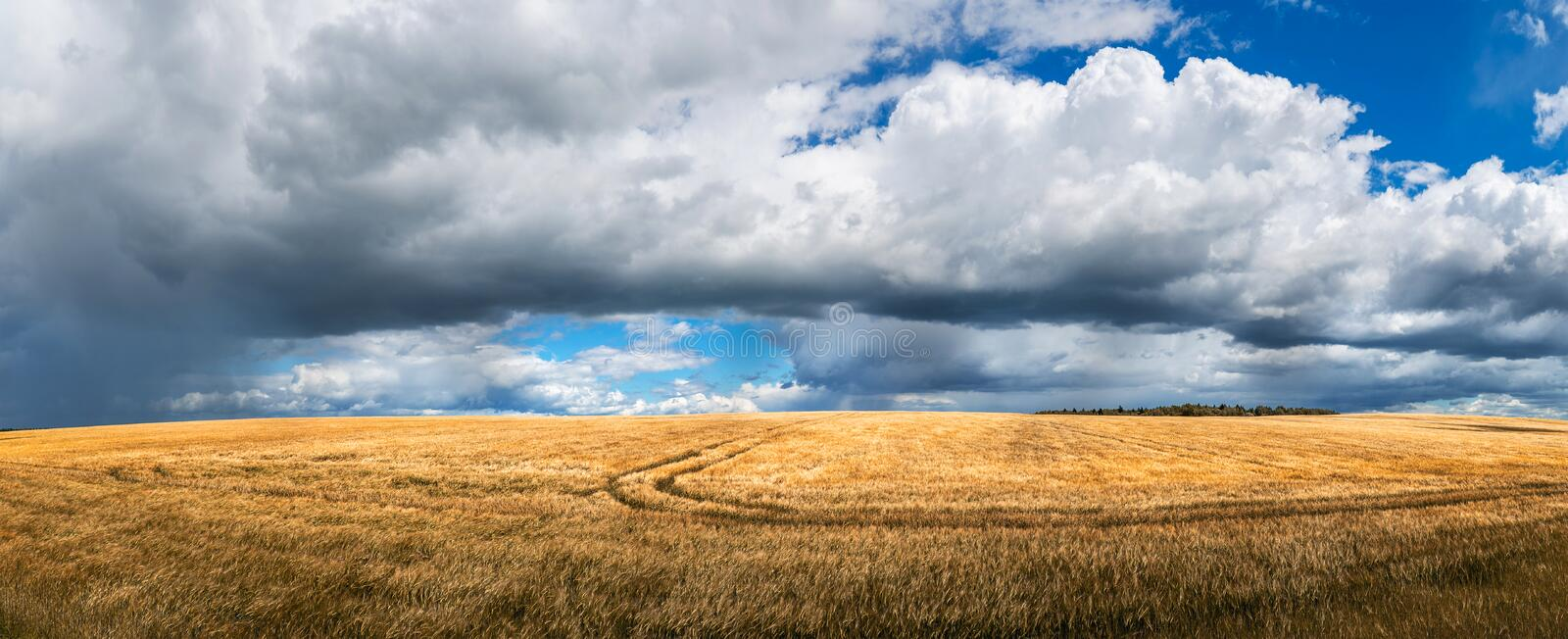 Scenic agricultural landscape stock photos