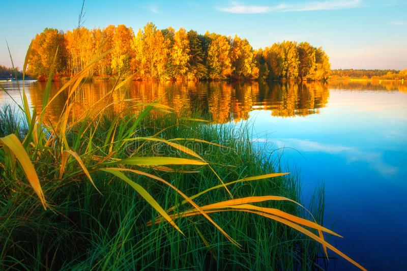 Scenic autumn nature. Autumn landscape on lake shore. Beautiful view on yellow trees. In october royalty free stock image