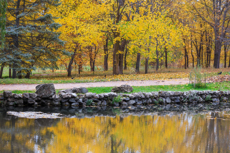 Scenic autumnal park with yellow trees near lake, reflection in stock photos